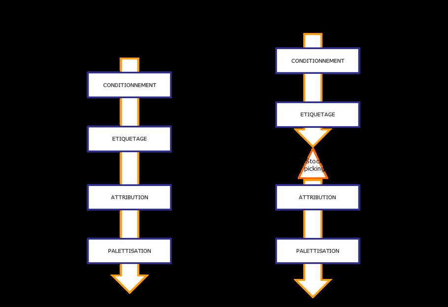 Conseil Supply Chain Schéma Organisation Flux